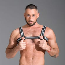 Bulldog Harness Neoprene grey/black