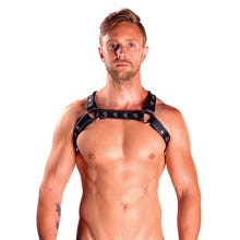 Leather X-Back Harness Premium black Gr.L/XL