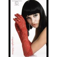 Chilirose Spitzen-Handschuhe