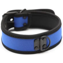 RudeRider Neoprene Puppy Collar blue