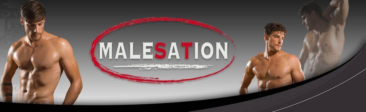 Malesation Sextoys bei Dildoking